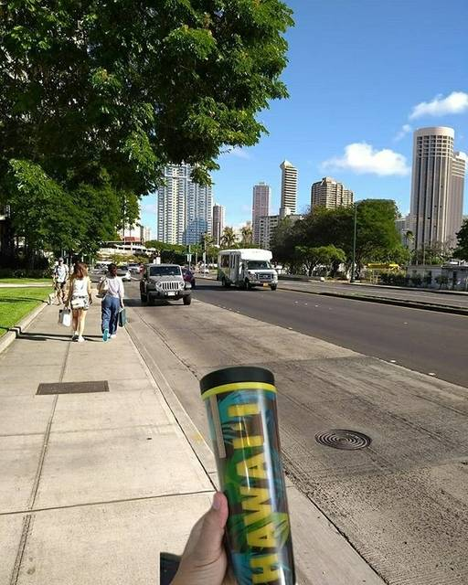 Nikhil Choudhary,United States,Hawaii,Honolulu,Honolulu,undefined,Hi on Hawaii 😋-Its a dream destination and budget options available once you are there.,atkinson-drive-nikhil-choudhary-a3b680972e0-0-of-6