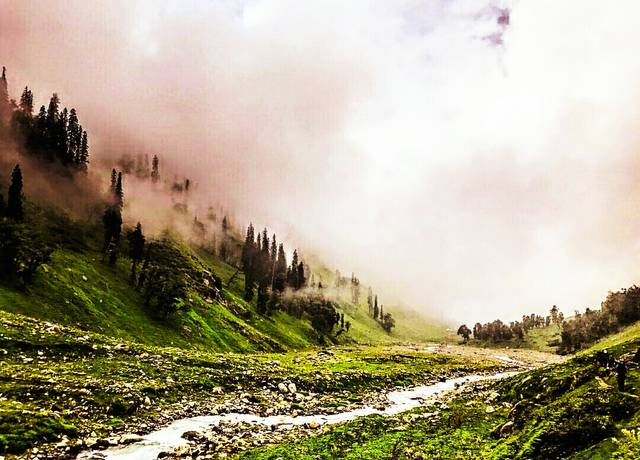 manali-mania-the-evergreen-recluse-for-lost-souls-c78ca635fff